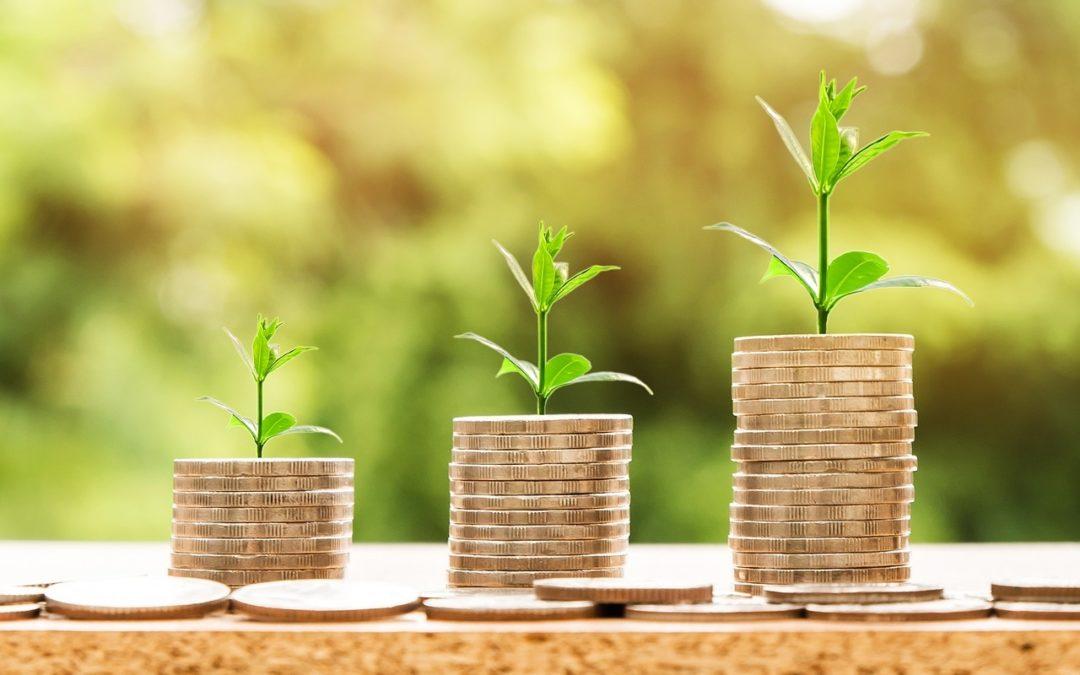 Tradenomin talous – muutama sana sijoittamisesta